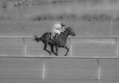 Bay Thoroughbred Photograph - Because I Want To by Betsy Knapp