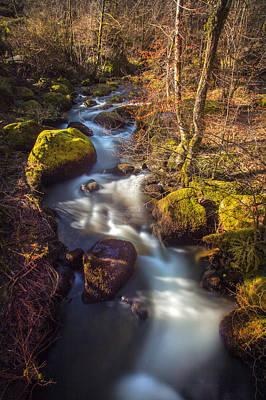 Becky Falls Photograph - Becky Falls, Dartmoor by David Hare