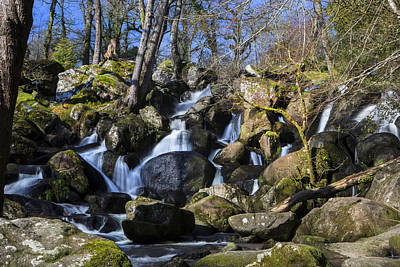 Becky Photograph - Becky Falls by David Hare