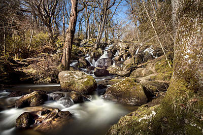Becky Photograph - Becky Falls In Spring by David Hare