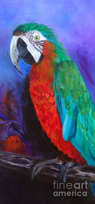 Becky The Macaw Art Print by Jenny Lee