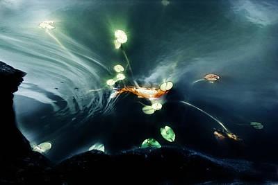 Goldfish Digital Art - Becoming by John Poon