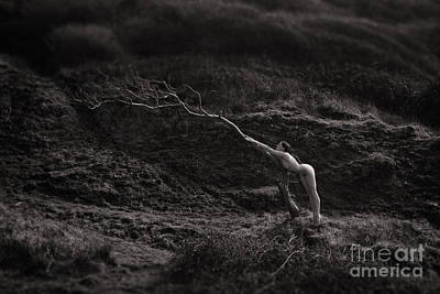 Photograph - Becoming One With Nature - Part 2 by Clayton Bastiani