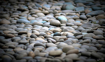 Photograph - Bed Of Rocks Centered Focus by Dee Browning