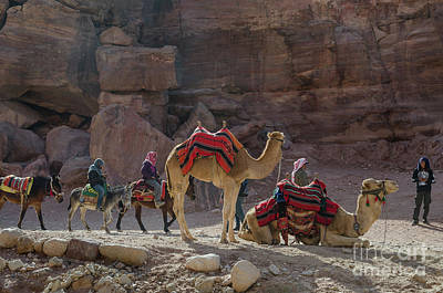 Photograph - Bedouin Tribesmen, Petra Jordan by Perry Rodriguez