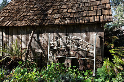 Photograph - Bedstead Against The Garden Shed  by Kathleen Bishop
