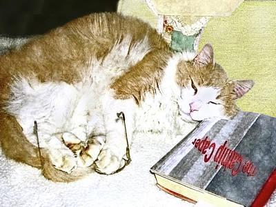 Digital Art - Bedtime Cat by Susan Leggett