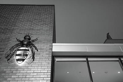 Photograph - Bee And Penguin - 21c Museum Hotel Black And White by Gregory Ballos