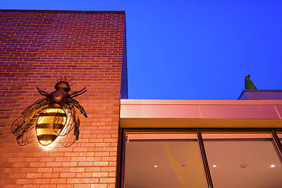 Photograph - Bee And Penguin - 21c Museum Hotel by Gregory Ballos