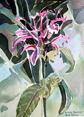 Healing Drawing - Bee Balm by Mindy Newman