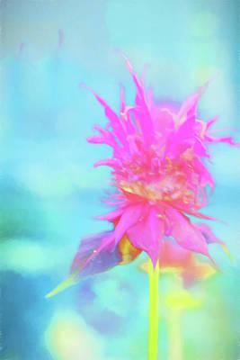 Photograph - Bee Balm by Tom Singleton