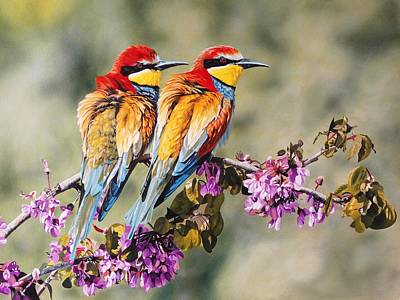 Wall Art - Painting - Bee Eaters by Julian Wheat
