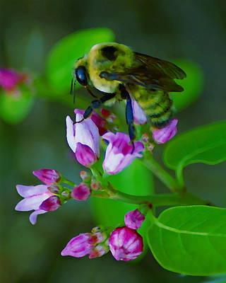 Photograph - Bee Good 2 by Ben Upham III