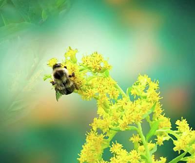 Digital Art - Bee On A Yellow Flower by Rusty R Smith