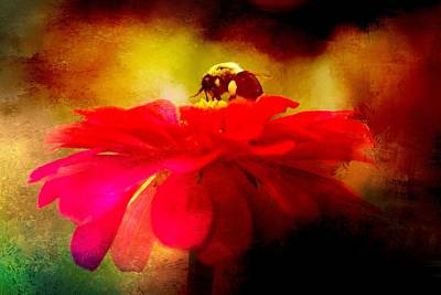 Photograph - Bee On Red by Alice Gipson