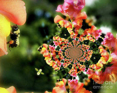 Bee On Snapdragon Flower Abstract Art Print by Smilin Eyes  Treasures