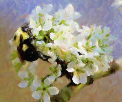 Bee Digital Art - Bee On White Flowers by Troy Green