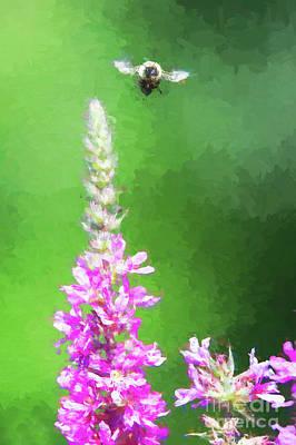 Bee Over Flowers Art Print