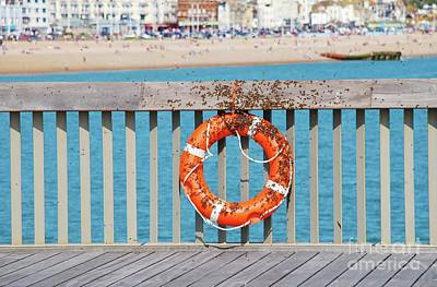 Photograph - Bee Swarm On Hastings Pier by David Fowler