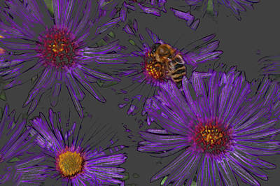 Bee With Asters On Gray Art Print by ShaddowCat Arts - Sherry