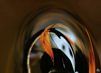 Photograph - Beech Leaf Abstract by Wayne King