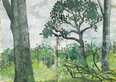 Painting - Beech Trees ,grey Day In The Woods by Martin Stankewitz