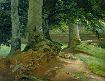 Tree Roots Painting - Beech Trees In Frederiksdal Near Copenhagen by Christian Ernst Bernhard Morgenstern