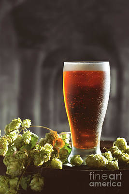 Hop Photograph - Beer And Hops On Barrel by Amanda Elwell