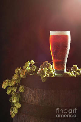 Beer Photograph - Beer With Hops by Amanda Elwell