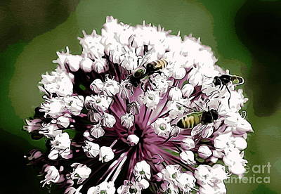 Photograph - Bees And Leek by Erica Hanel