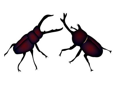 Digital Art - Beetle And Stag Beetle by Moto-hal