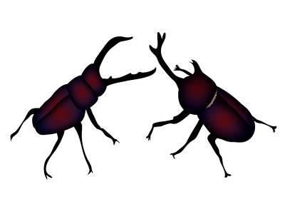 Digital Art - Beetle And Stag Beetle by Moto-hal