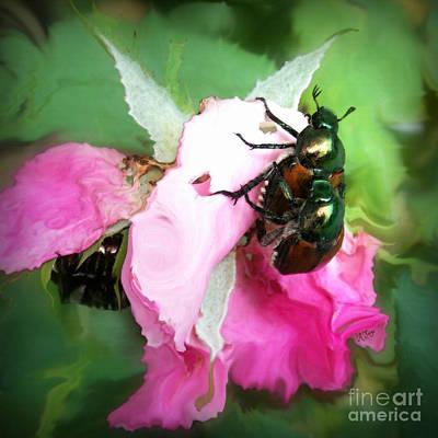 Knockout Digital Art - Beetle Invasion by Anita Faye