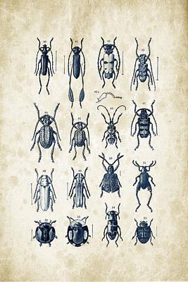 Bug Digital Art - Beetles - 1897 - 04 by Aged Pixel