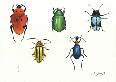 Beetle Painting - Beetles by Juan Bosco