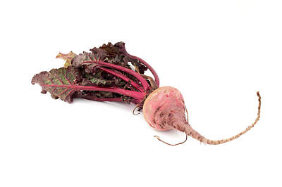 Photograph - Beetroot by Fabrizio Troiani