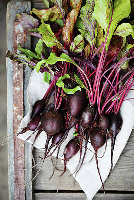 beets in a rustic style by Iuliia Malivanchuk Art Print by Iuliia Malivanchuk
