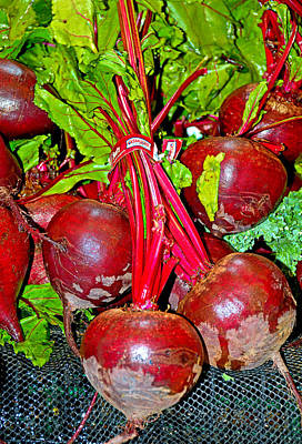 Photograph - Beets by Robert Meyers-Lussier