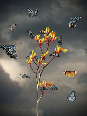 Kangaroo Digital Art - Before The Storm by Jesper Krijgsman