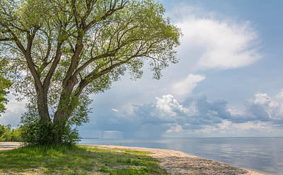 Photograph - Before The Storm by Patti Raine