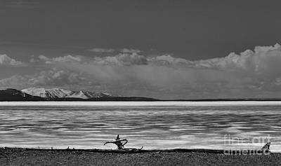 Photograph - Before The Thaw On Yellowstone Lake by Nadalyn Larsen
