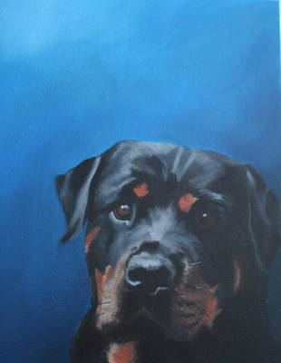 Wall Art - Painting - Begging Portrait Of A Rottweiler by Alison Stafford