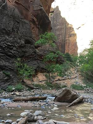 Photograph - Beginning Of The Narrows by Jennifer Lopez