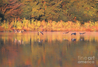 Photograph - Beginnings Of Fall by Elizabeth Winter
