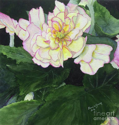 Begonia Garden Painting - Begonia by Bonnie Young