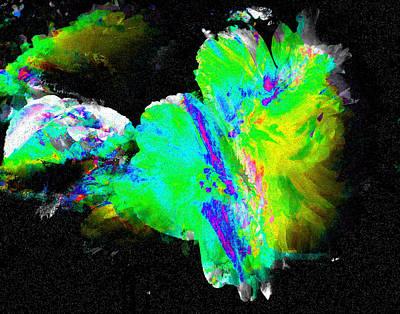 Digital Art - Begonia Explosion 2 by Max DeBeeson