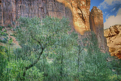 Photograph - Behind The Falls - Lower Emerald Pools - Zion by Nikolyn McDonald