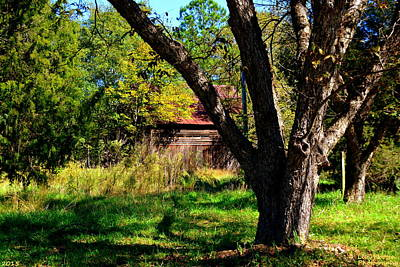 Photograph - Behind The Old Oak Tree by Lisa Wooten