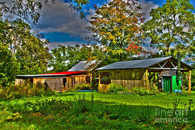 Photograph - Behind The Shed by William Norton