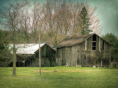 Photograph - Behind The Woodshed by Leslie Montgomery
